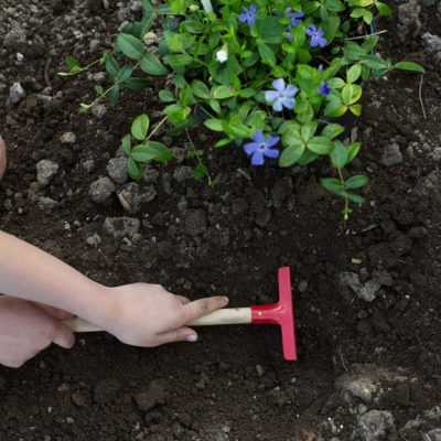 8 Tips for Gardening with Children