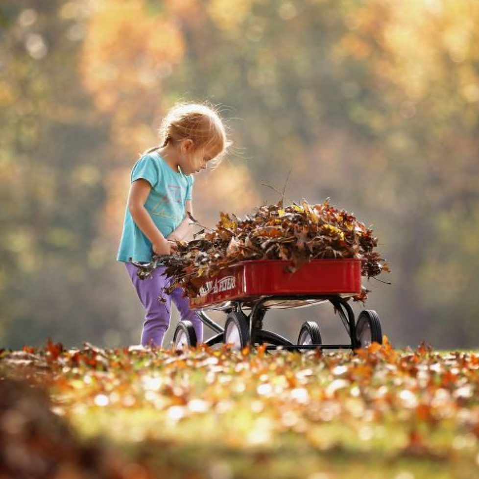10 Outdoor Autumn Activities To Do with Your Child